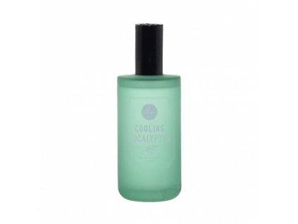 DW Home Prostorový parfém - Cooling Eucalyptus, 120ml