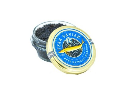 kaviar tzar caviar beluga altern