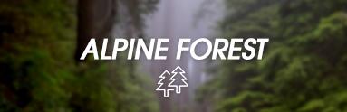 Zapach Alpine Forest