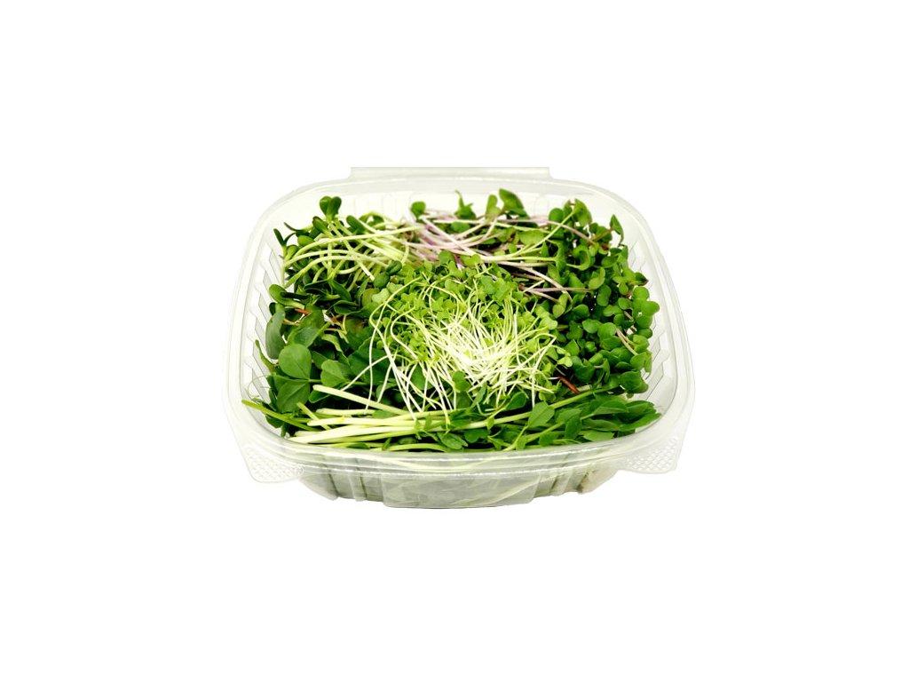 microgreen salad mix w lid open 550