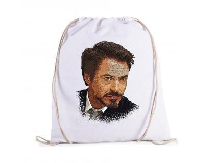 vak Ironman Tony Stark