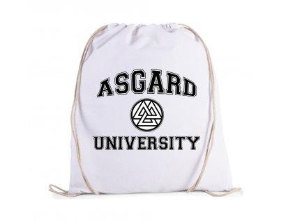 vak Thor Asgard univerzita