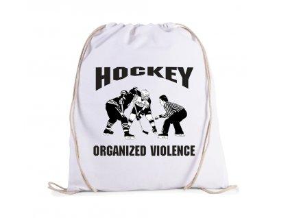 Vak Hokej organizované násilí