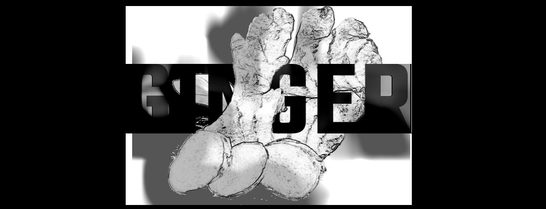 ginger_home-7