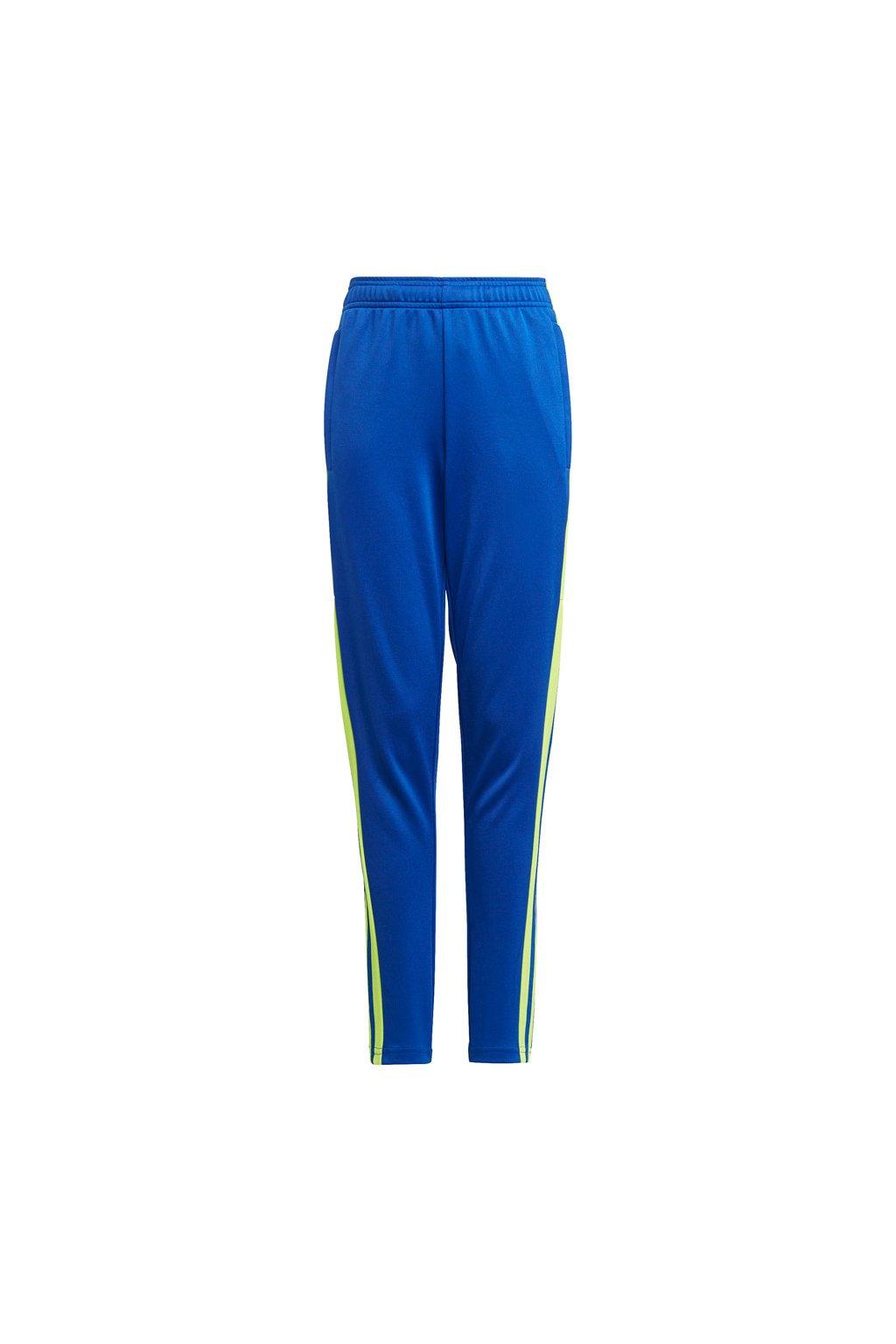 Chlapčenské tepláky adidas Squadra 21 Training Pant Youth modré-zelené GP6449