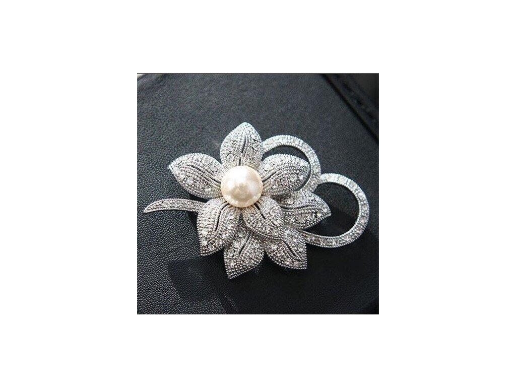 květ stříbrný