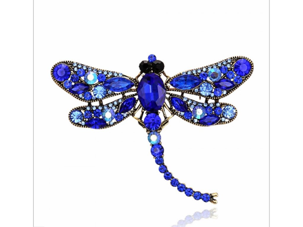 vážka modrá 1