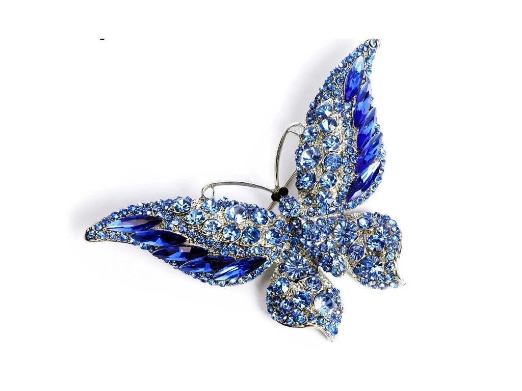 motýl modrý1