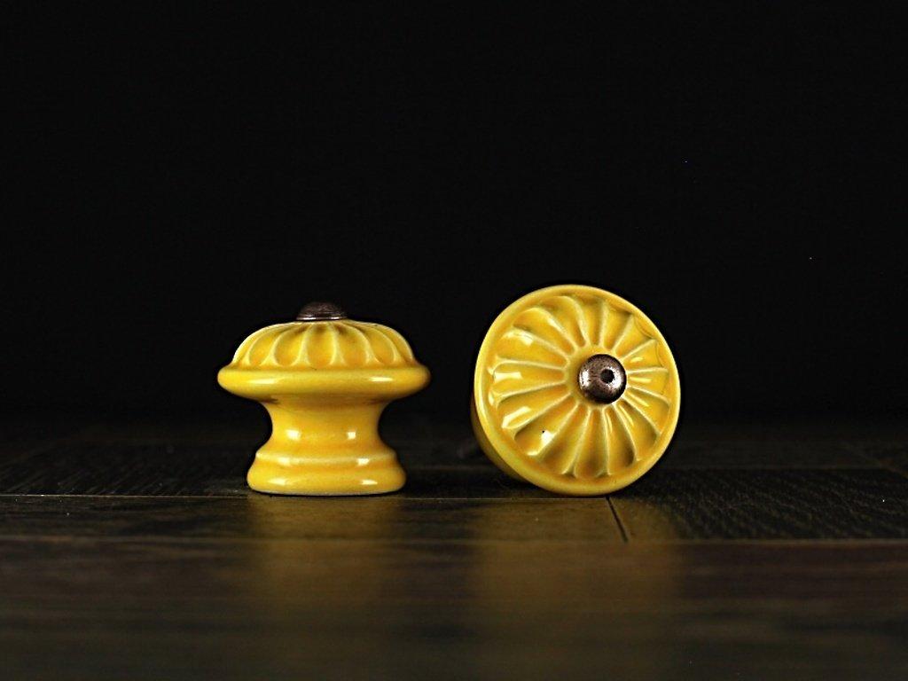 malá žlutá kopretina