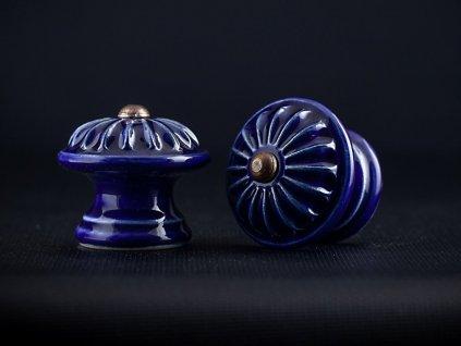 střední kobalt kopretina
