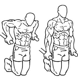 30denní plán / 12 tréninků = DIP/ Klik na bradlech s vlastní vahou těla