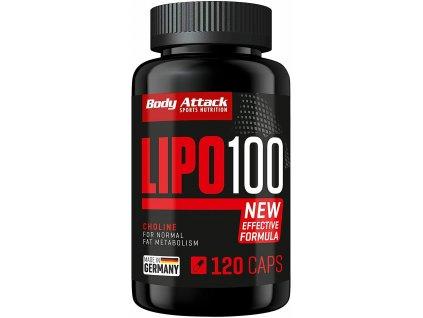 LIPO 100 120 kapslí