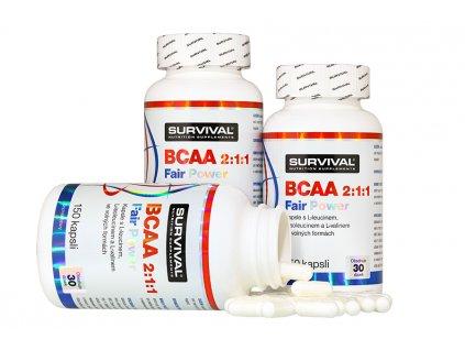 BCAA 211 900x600 3 900x600