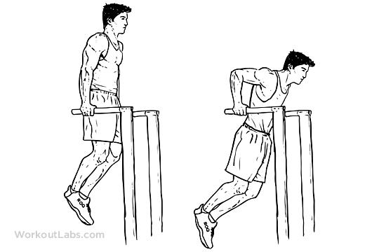 30-dňový plán / 12 tréningov = DIP / Klik na bradlách s vlastnou váhou tela