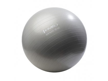 27894 gymnasticky mic hms yb02 55 cm sedy
