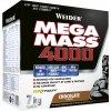 Weider Giant Mega Mass 4000 Gainer 7000 g (Varianta Vanilka)