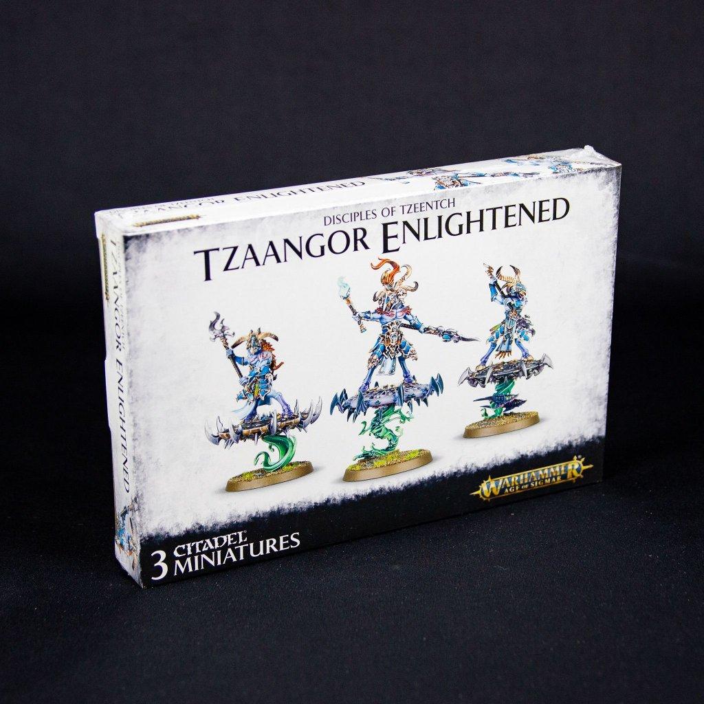 Warhammer: Age of Sigmar - Tzeentch Arcanites Tzaangor Enlightened