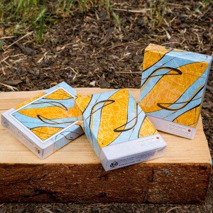 Pollock Cardistry deck - karty