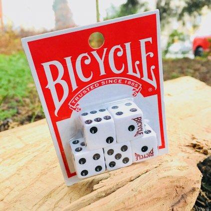 Dice (sada 5 hracích kostek) (Bicycle)
