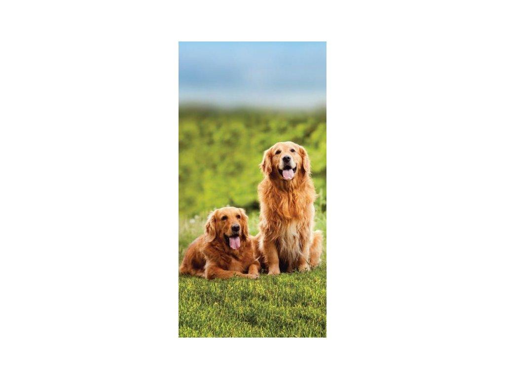 Detská osuška Dog 17, 70x140cm