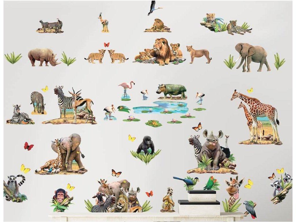 Sada dekoračných samolepiek na stenu - Jungle Safari