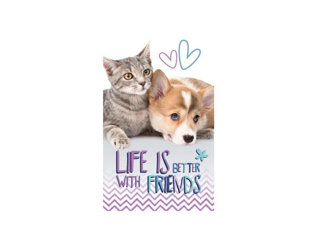 Detský uterák Cat and Dog - 30x50cm
