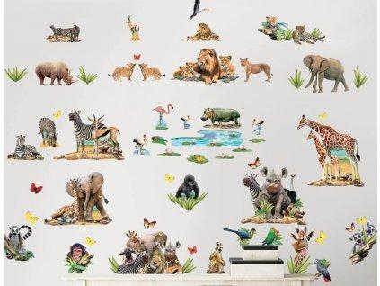 Sada nálepiek na stenu - Jungle Safari
