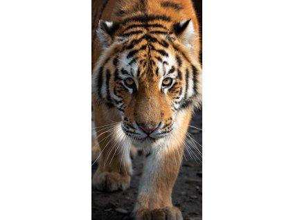osuska tiger, 70x140cm, Carbotex