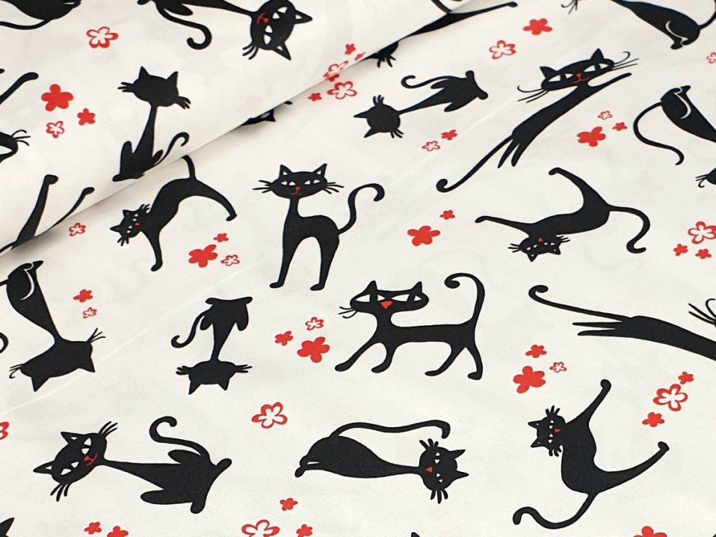 Bavlněné plátno - Kočky na krémově bílé
