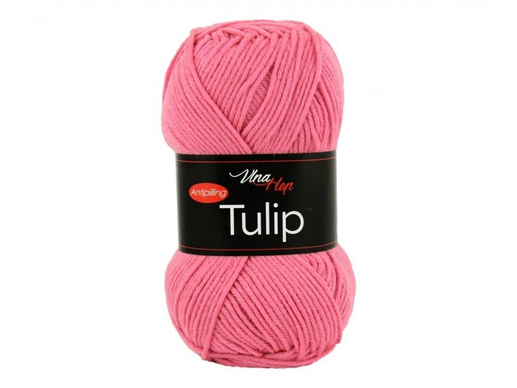 tulip4491