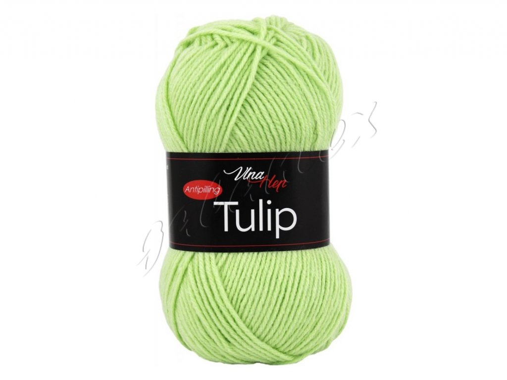 tulip4159