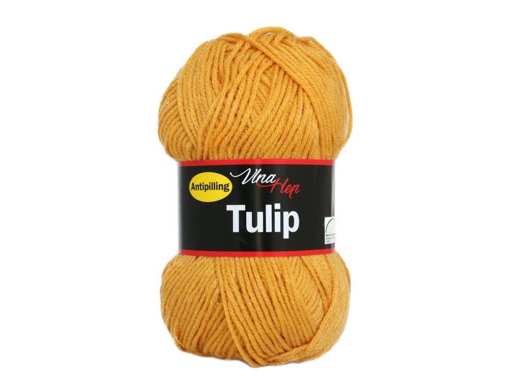 tulip4489