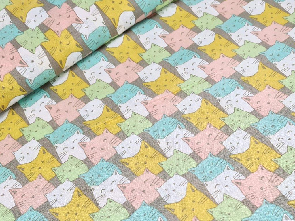 Bavlněné plátno - Kočky v řadách