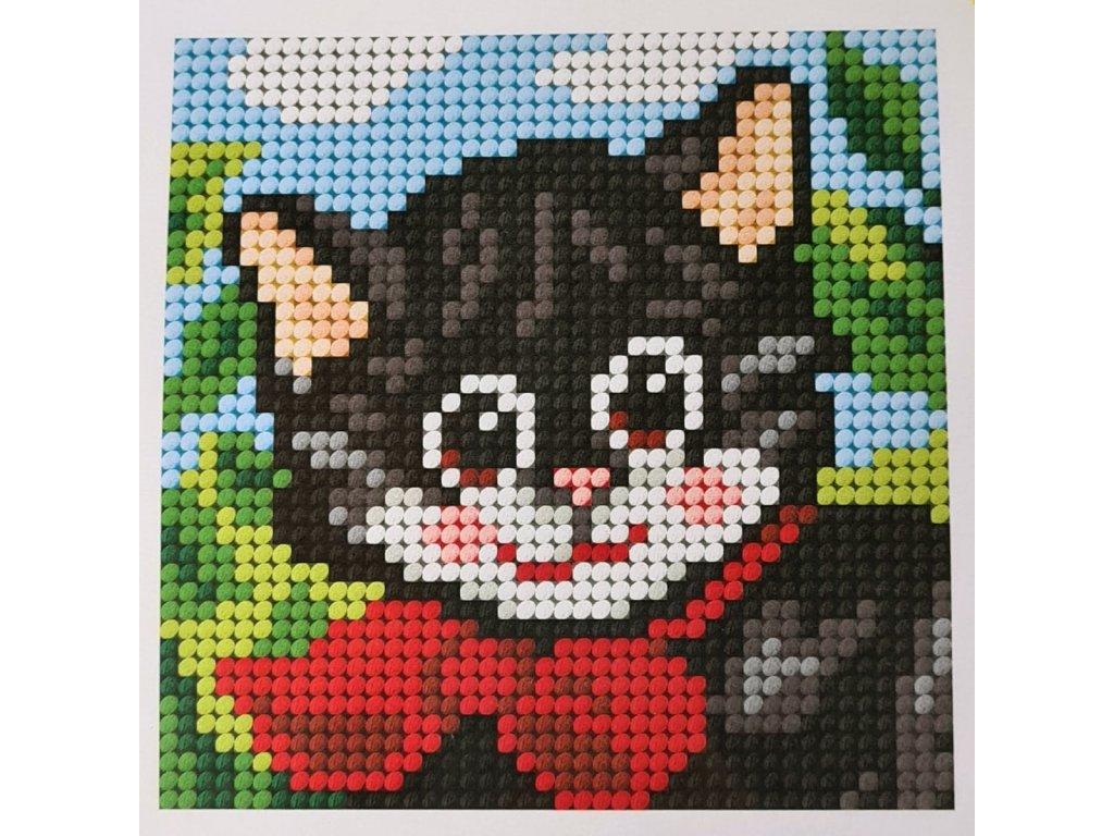 Sada vyšívací 16,5 x 16,5 cm - Kočka