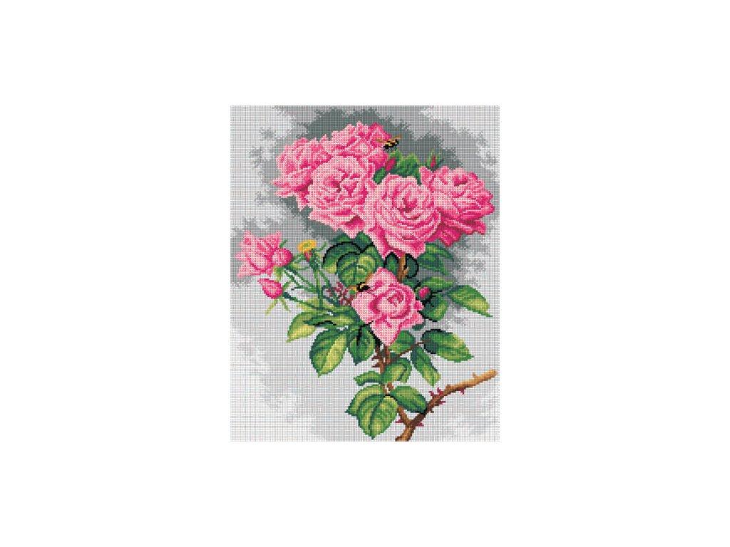 Předloha vyšívací 40 x 50 cm - Růže