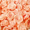 Růžička saténová 10-12mm (10 kusů) - meruňková