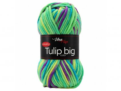 tulip big color 3