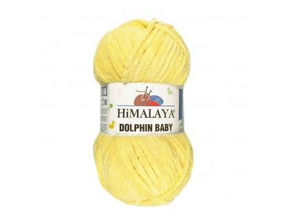 dolphinbaby80313