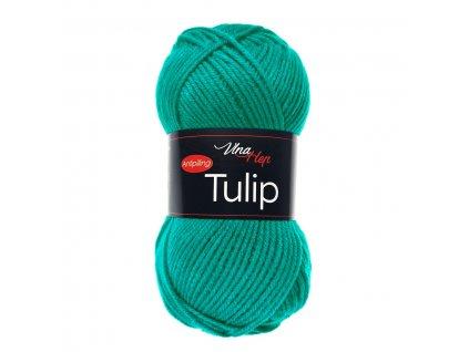 tulip4139
