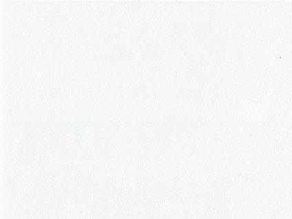 kaiman 03 white