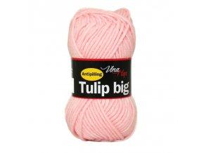 tulip big 4026
