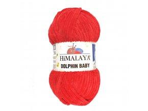 dolphinbaby80318