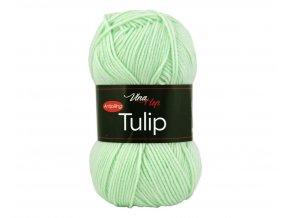 tulip4158