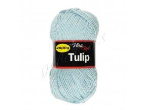 tulip4079