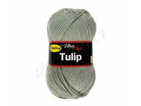 tulip4231