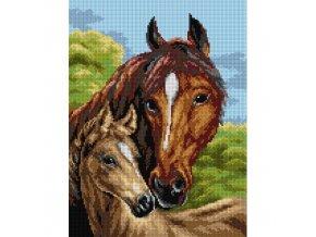 Předloha vyšívací 30 x 40 cm - Koně