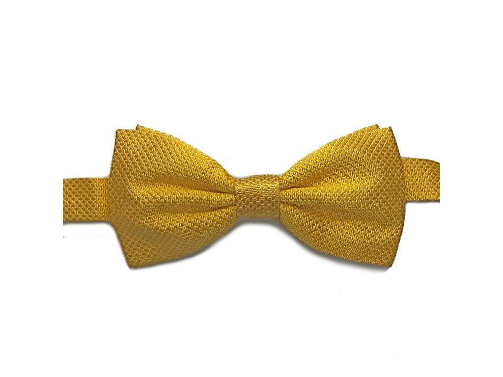 Žlutý uvázaný motýlek 01
