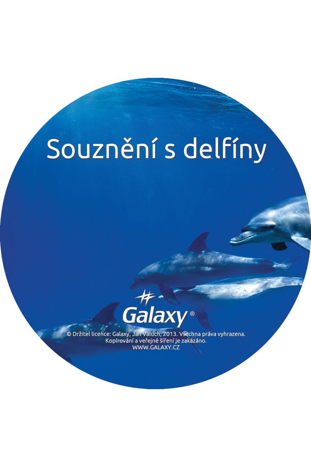 souzneni s delfiny disk