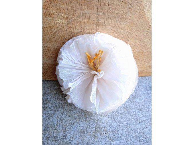 Květ s nádechem do béžova