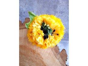 Květ jasně žluté barvy